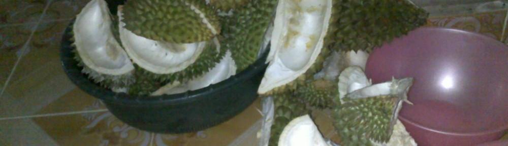 Gambar kulit durian