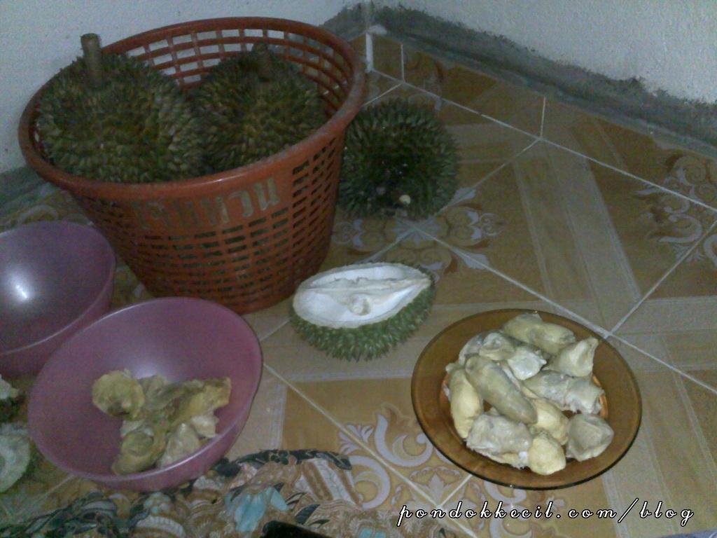 Gambar Isi Durian