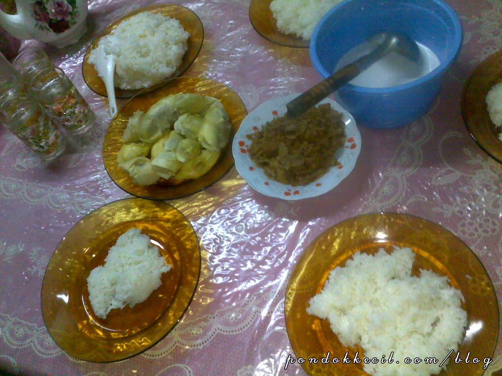 Gambar pulut durian